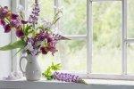 Jak wyeksponować kwiaty doniczkowe na oknie?