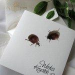 Invitations / Wedding Invitation 01731_44_ladybugs