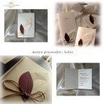 Invitations / Wedding Invitation 1432_1