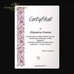 certyfikat - CB-17-4