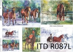 Papier ryżowy ITD R0087L