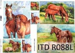 Papier ryżowy ITD R0088L