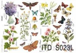 Papier decoupage SOFT ITD S0023L