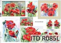 Papier ryżowy ITD R0085L