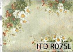 Papier ryżowy ITD R0075L