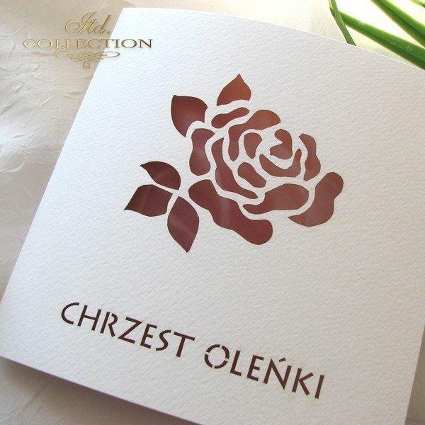 Pozvánky na Křest 1731_010_růže
