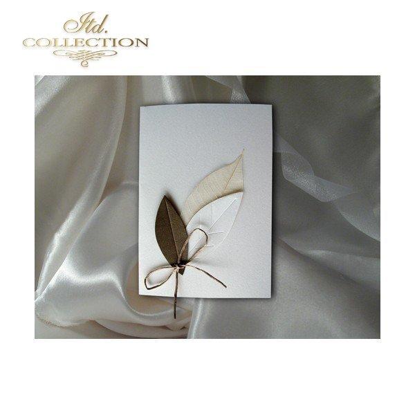 Einladungskarten / Hochzeitskarte 1432_1