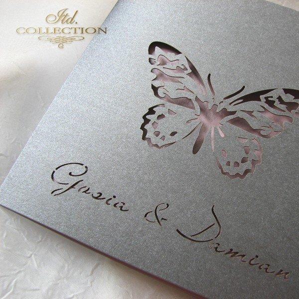 Invitations / Wedding Invitation 01694_95