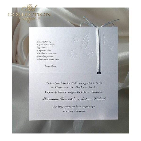 Invitations / Wedding Invitation 1223