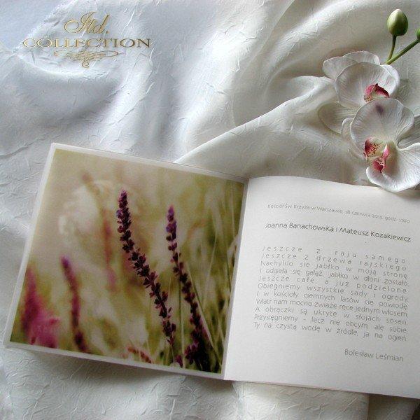 Invitations / Wedding Invitation 1726_41_heather_flower