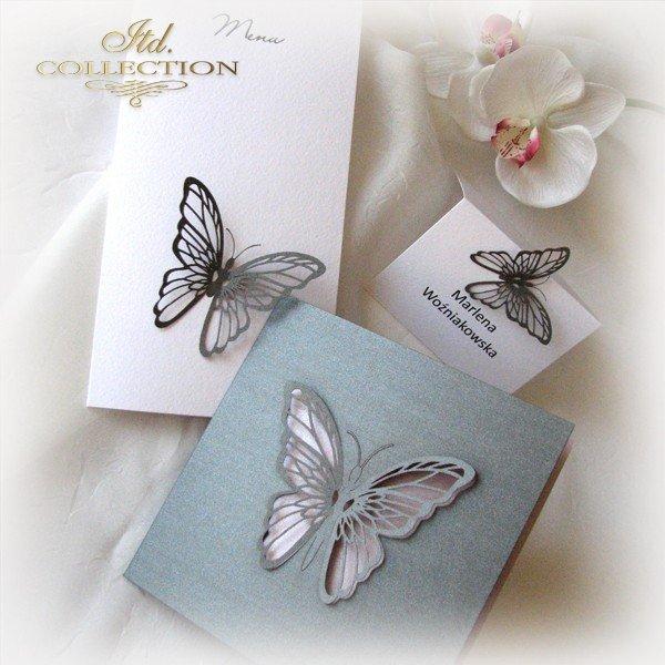 Invitations / Wedding Invitation 1694_97_pink