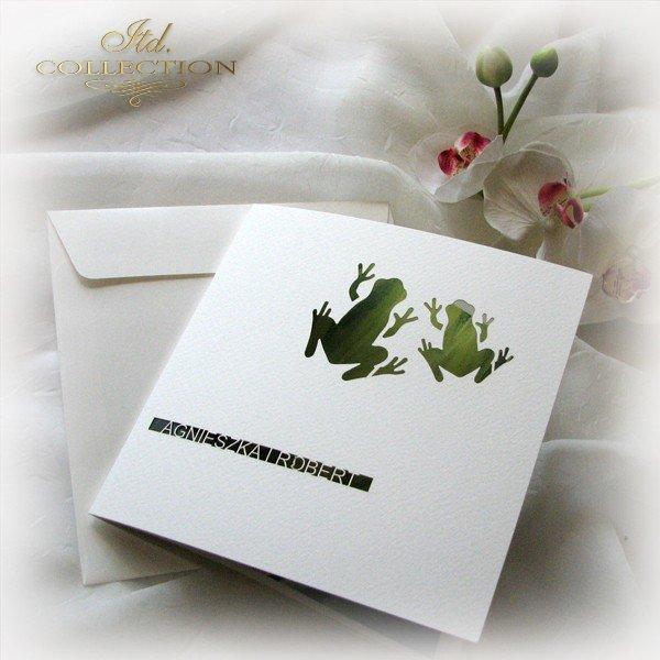 Invitations / Wedding Invitation 1731_50_grass