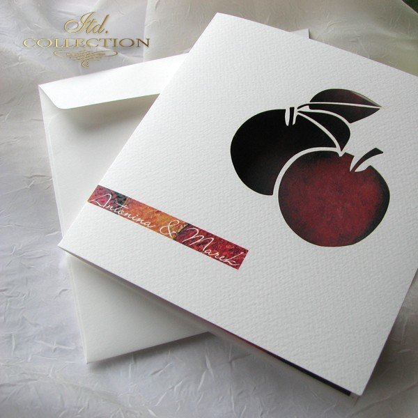 Zaproszenia ślubne / zaproszenie 01731_45_jabłka