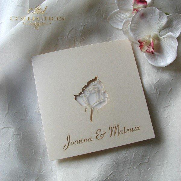 Invitations / Wedding Invitation 01690_94