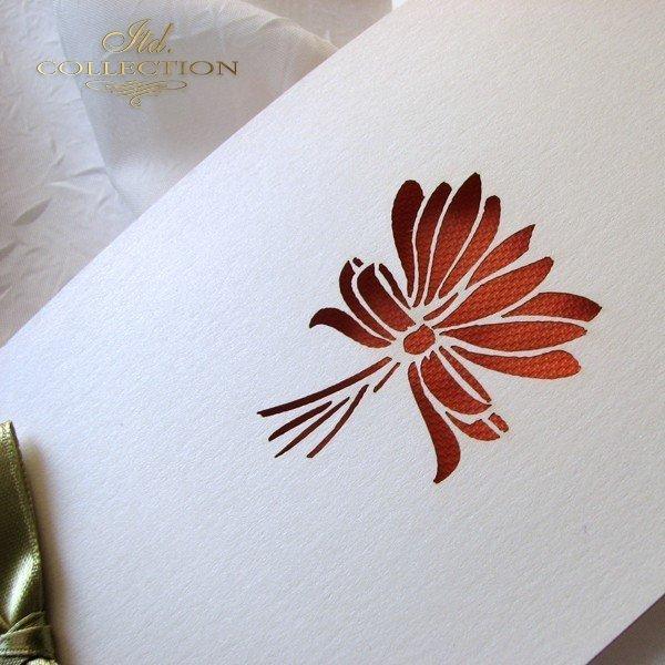 Invitations / Wedding Invitation 01722_69_orange