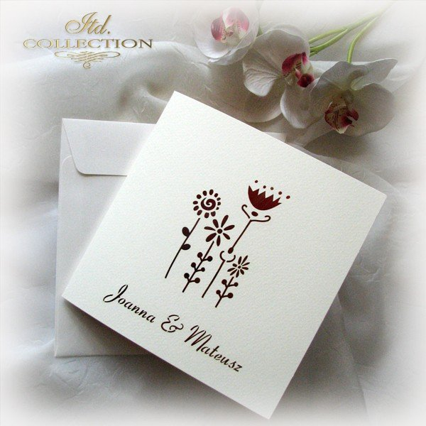 Invitations / Wedding Invitation 01732_51_gerbera