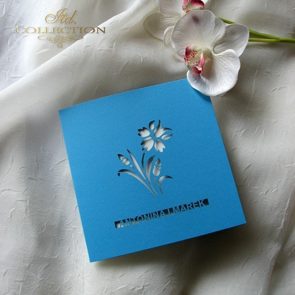 Invitations / Wedding Invitation 01698_62