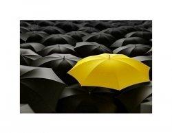 yellow umbrella - reprodukcja