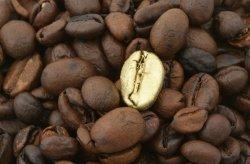 Fototapeta do kuchni - Złote ziarno kawy - metamorfoza - 175x115 cm