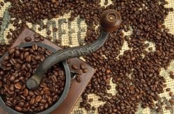 Fototapeta do kuchni - Old Coffee Grinder - 175x115 cm