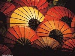 Japanese Parasols - reprodukcja