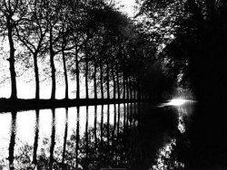 River in France - reprodukcja