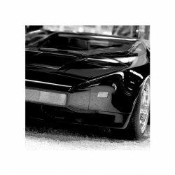 Czarna bestia (Sport car) - reprodukcja