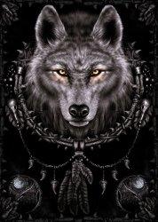 Spiral (Wolf Dreams) - plakat