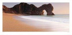 Plaża, Wybrzeże - reprodukcja