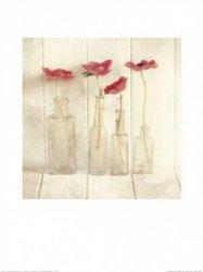 Kwiatki w butelkach - reprodukcja