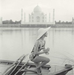 Taj Mahal, India - reprodukcja