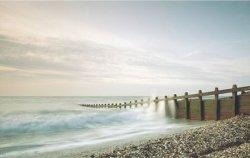 Plaża - reprodukcja