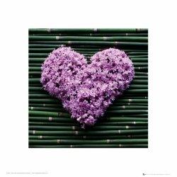 Serce z kwiatków - reprodukcja