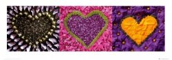 Madalenes Hearts purple - reprodukcja