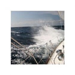 Na morzu - reprodukcja