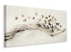 Drift of Butterflies - Obraz na płótnie