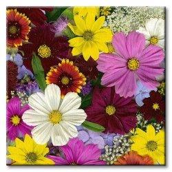 Obraz do kuchni - Dzikie kwiaty - 40x40 cm