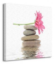 Zen - spa stones with flowers - Obraz na płótnie