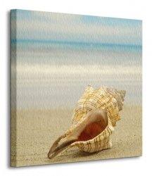 Muszla na plaży - Obraz na płótnie