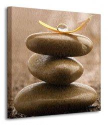 Piórko na kamiennej budowli - Obraz na płótnie
