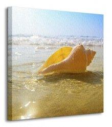 Muszelka na plaży, ocean - Obraz na płótnie