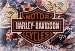 Harley Davidson (Logos) - obraz na drewnie