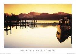 David Tarn (Golden Evening) - reprodukcja