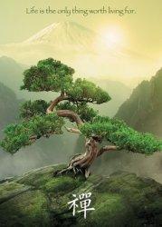 Zen Góra, Drzewo - plakat