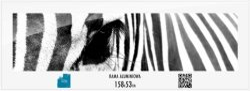 Rama aluminiowa 158x53 cm
