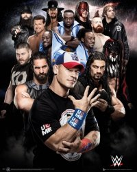 WWE Superstars - plakat