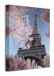 Eiffel Tower Infrared, Paris - Obraz na płótnie