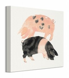 Gloucester Old Spot And Saddleback Pigs - Obraz na płótnie