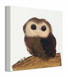 Little Owl - Obraz na płótnie