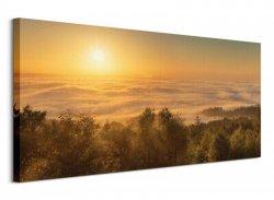 Mist Over The River Exe, Devon, England - Obraz na płótnie